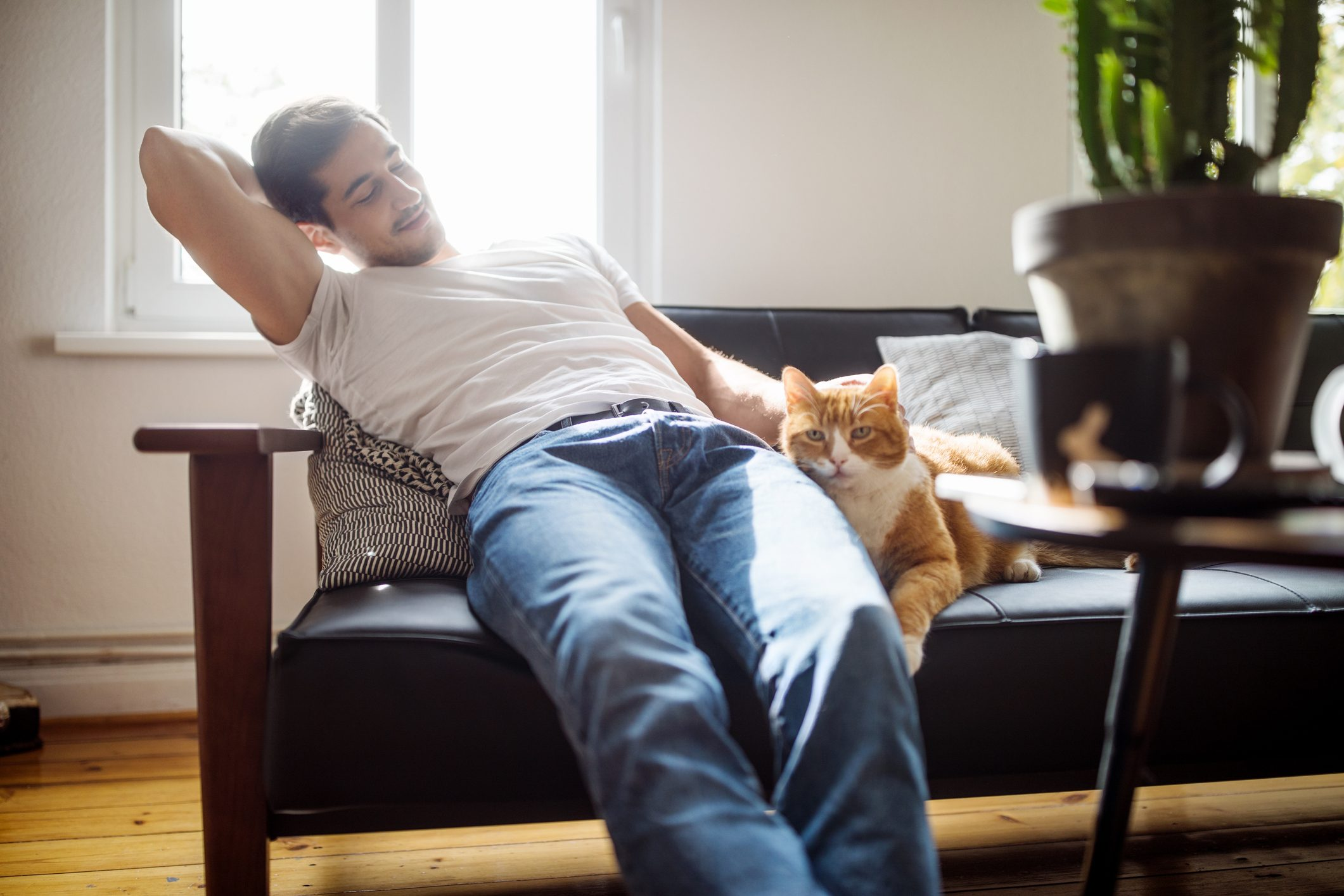 man sitting on couch with cat
