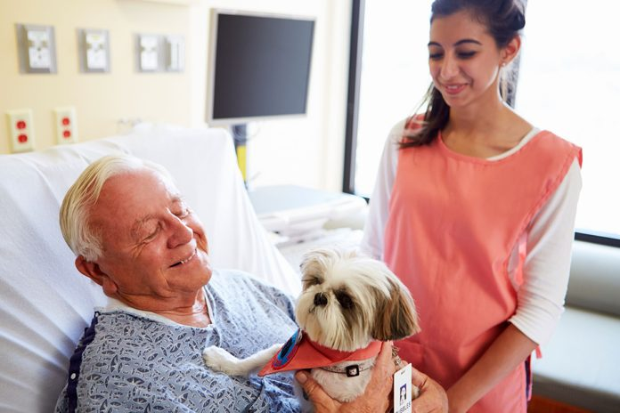 elderly man holding a puppy as an aide looks on