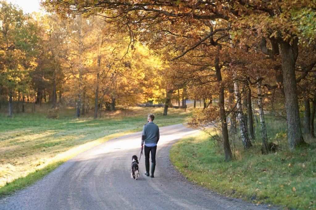 man walking with his dog through nature