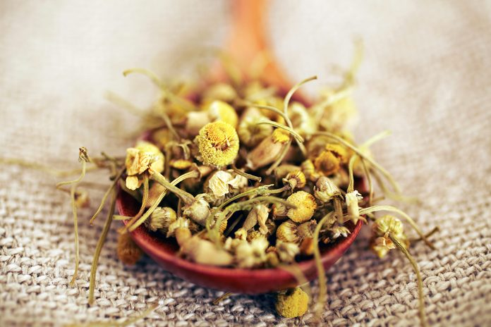dried chamomile in a wooden spoon on burlap