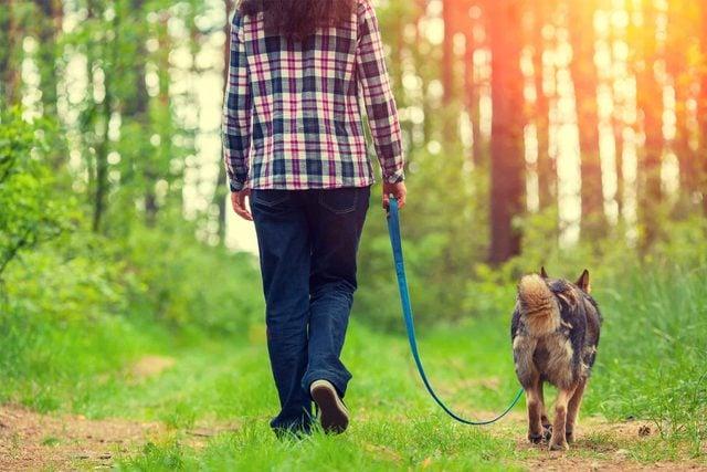 woman walking dog in woods