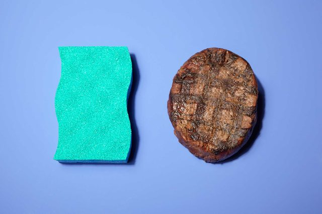 Illustration of portion control trick: dish sponge and burger