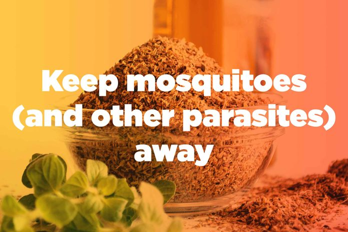 "graphic saying ""Keep mosquitoes (and other parasites) away"""