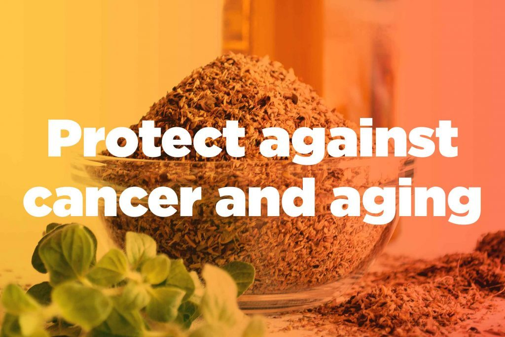 """graphic saying """"Protect against cancer and aging"""""""