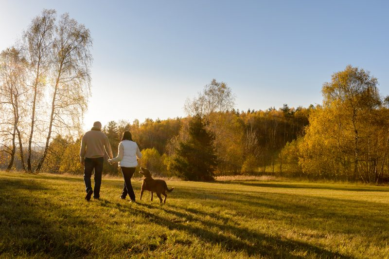 couple taking their dog on a walk