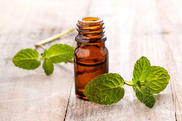 vial of peppermint oil with peppermint leaves