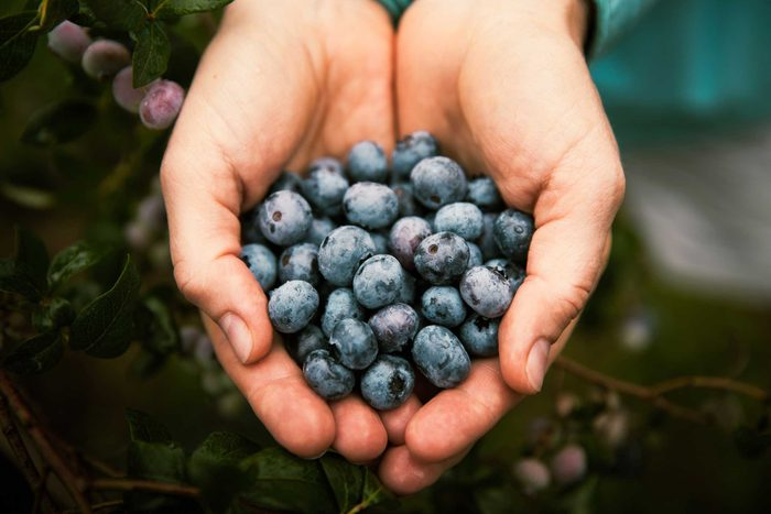 handful of blueberries