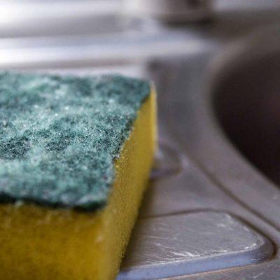 sponge_germy objects