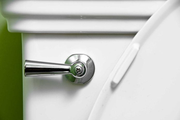 closeup of toilet flush handle