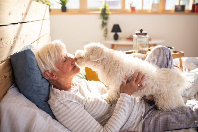 senior woman laying in bed with her dog