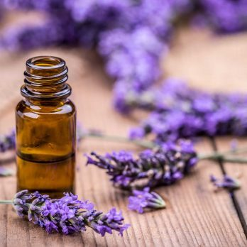 I Started Using Lavender for Stress Relief and Here's What Happened