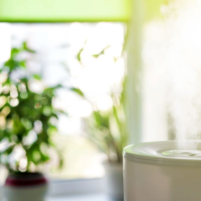 How to Choose the Best Humidifier for Your Space