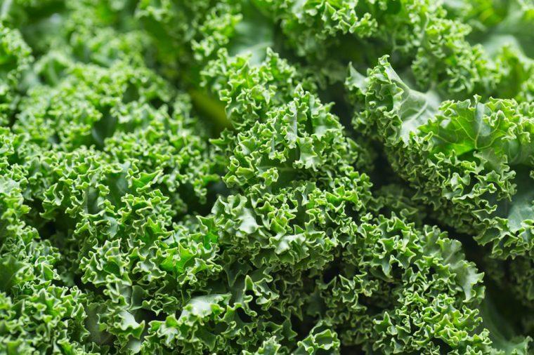 Close up of fresh kale