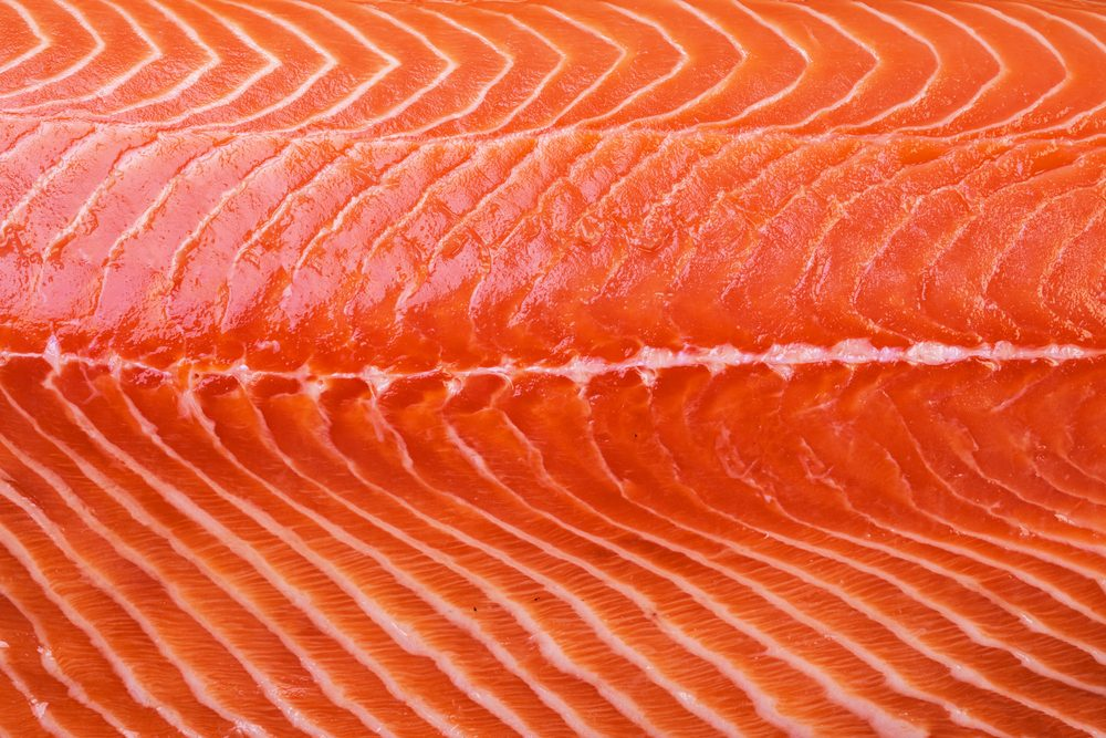 Close up of salmon filet