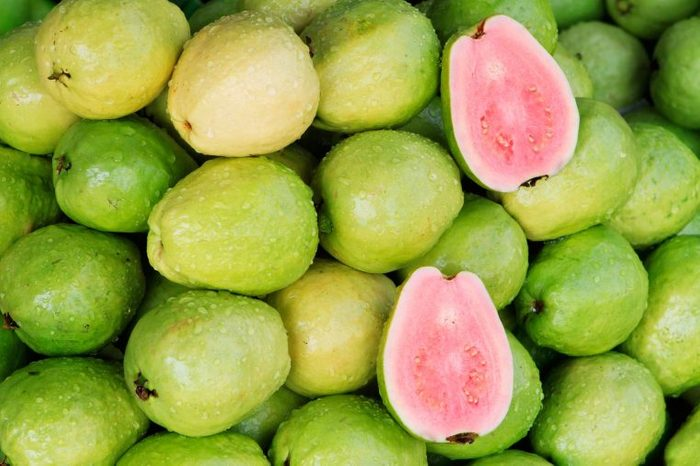 05_Guava_Foods_That_help_body_muscles_
