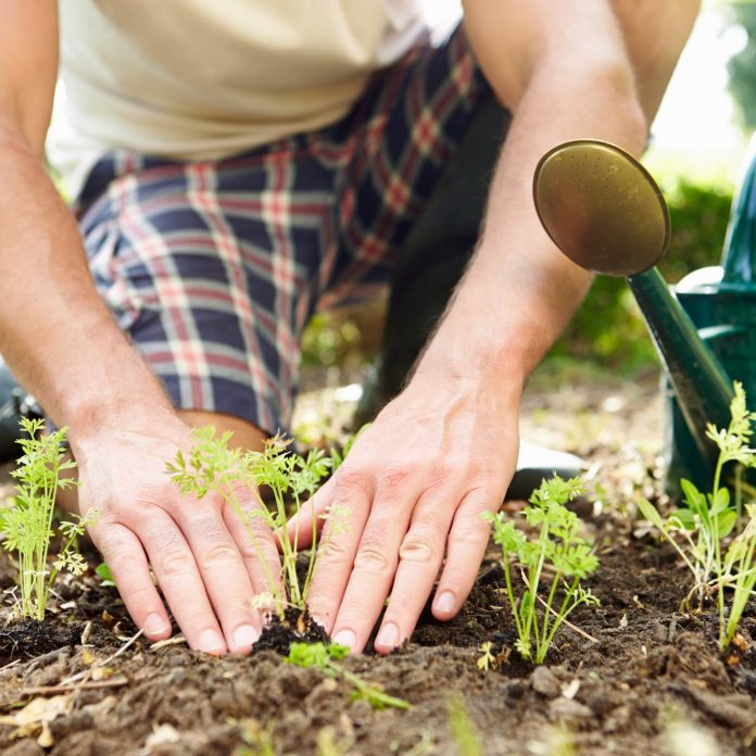 10 Surprising Ways Gardening Is One of the Healthiest Things You Can Do