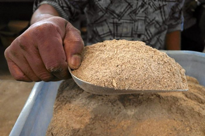 man with a scoop full of kava powder