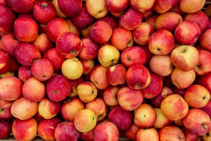 apples, lots of apples