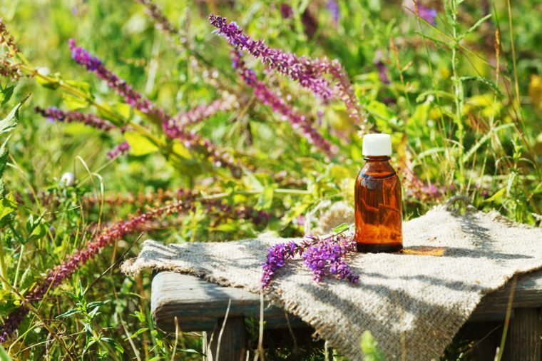 a field of blooms with essential oil bottle on a bench