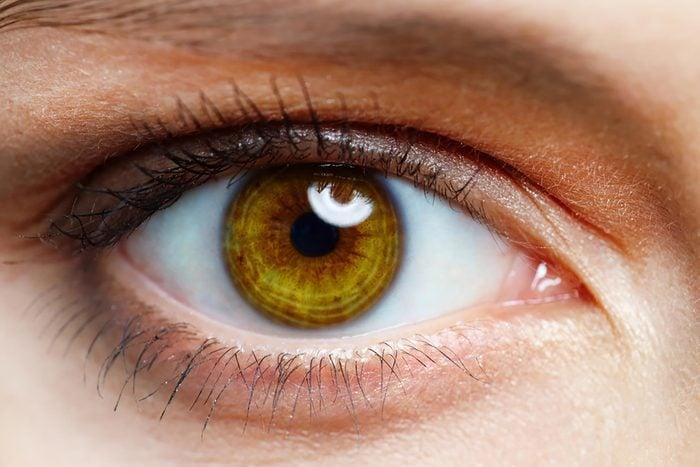 brown eye close up