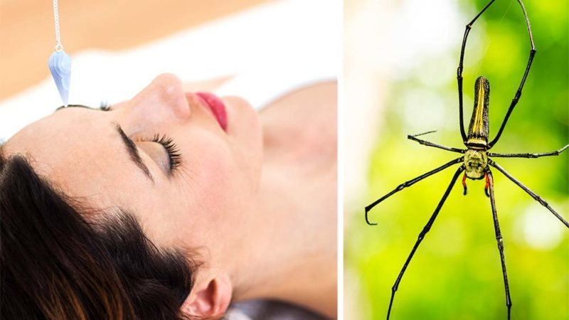 How-Hypnotherapy-Cured-My-Fear-of-Spiders
