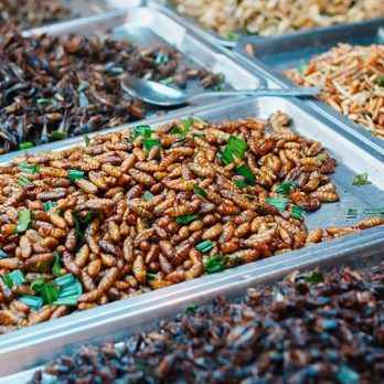 Get Used to Crickets on the Menu—Here Are 13 Radical Diet Changes You'll See in 10 Years