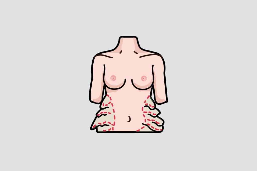 illustration of a woman's torso