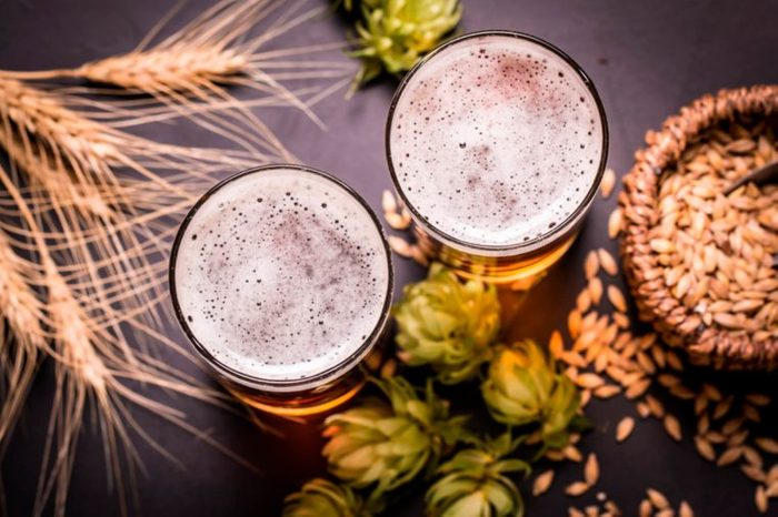 Top view of two glasses of beer surrounded by hops and wheat.
