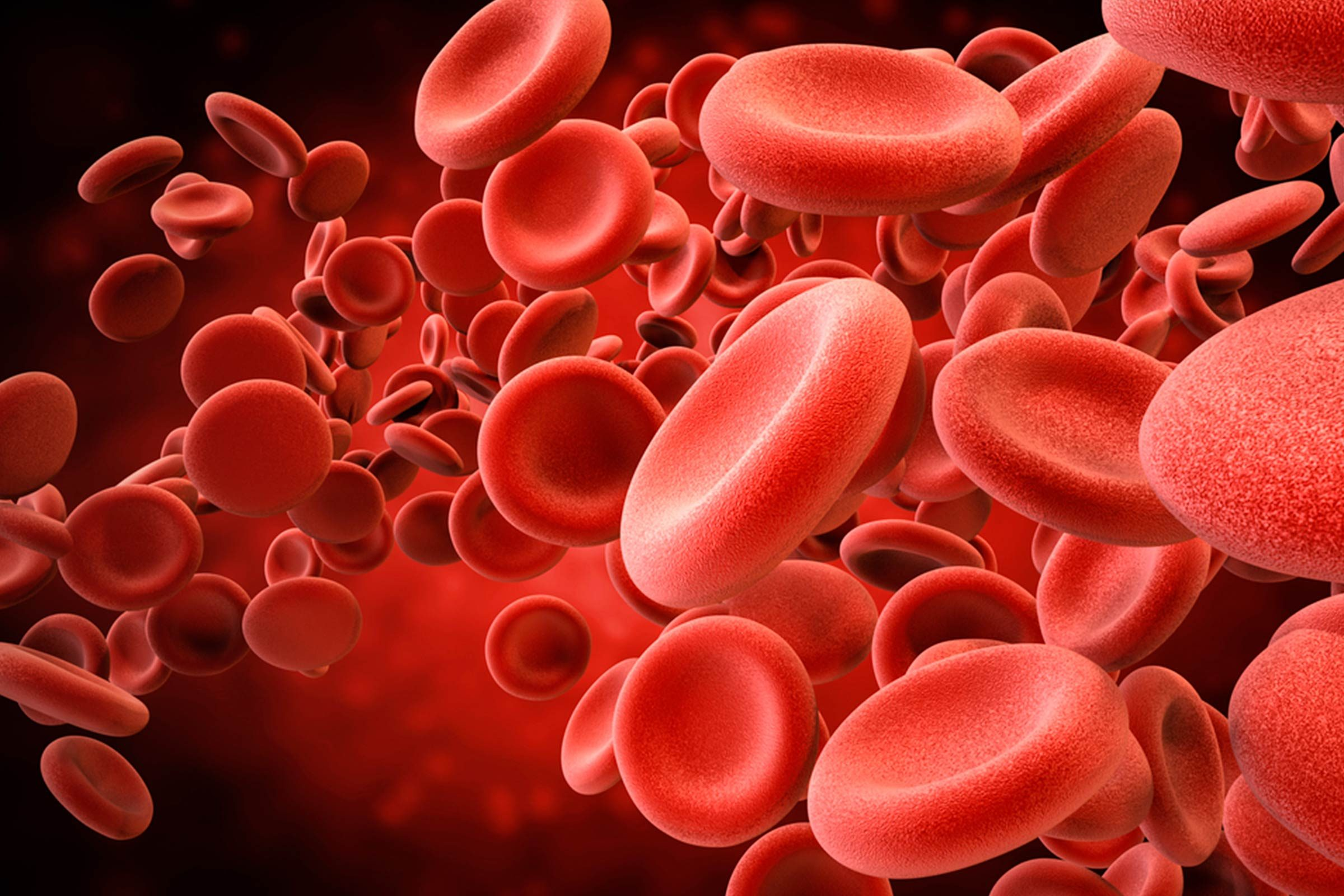 illustration of red blood cells