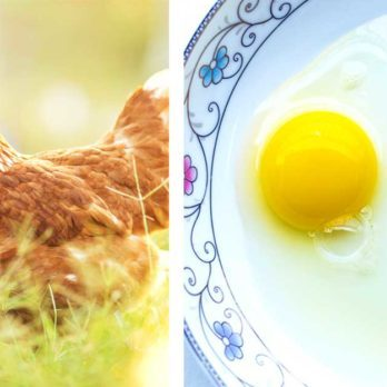 Here's What an Egg's Yolk Color Really Means
