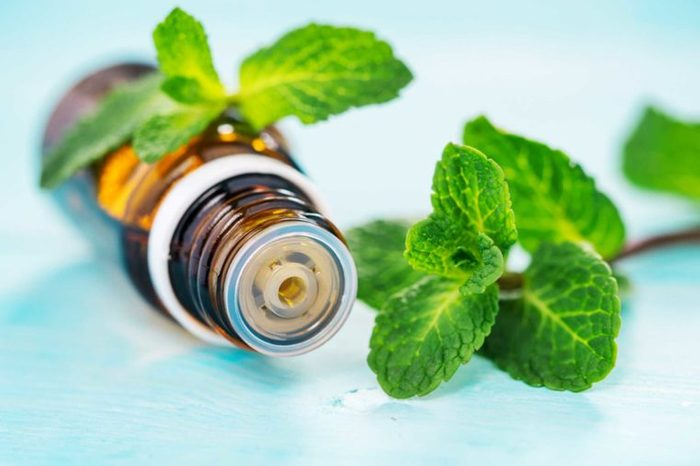 mint leaves with essential oil bottle on its side