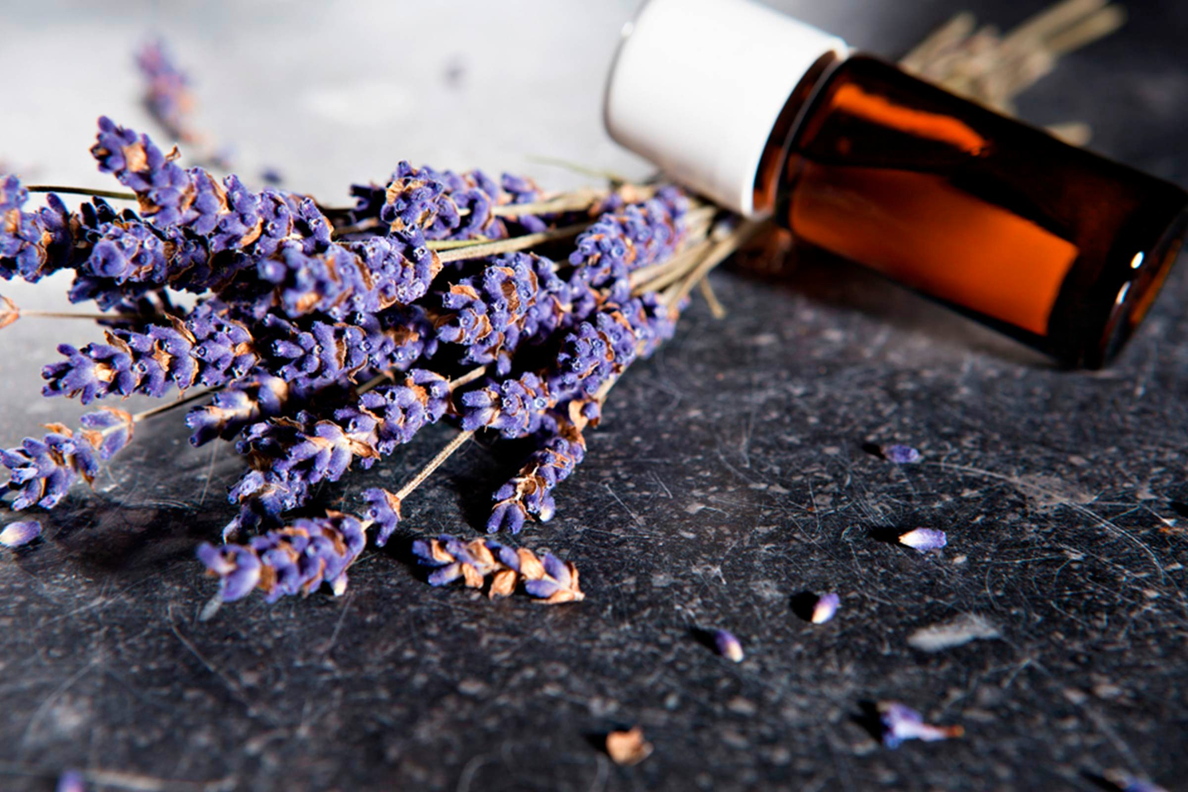 lavender blooms and bottle of essential oil