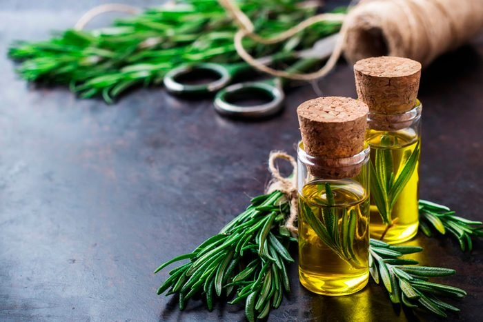 rosemary stems with essential oil bottles
