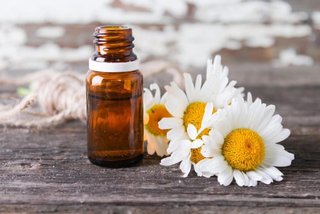 chamomile oil bottle next to sunflowers on wooden table