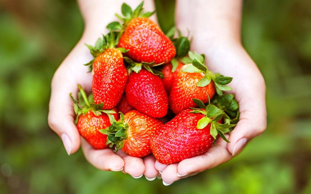 9 Potential Health Benefits of Strawberries