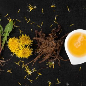 8 Things To Know About Using Dandelion Root