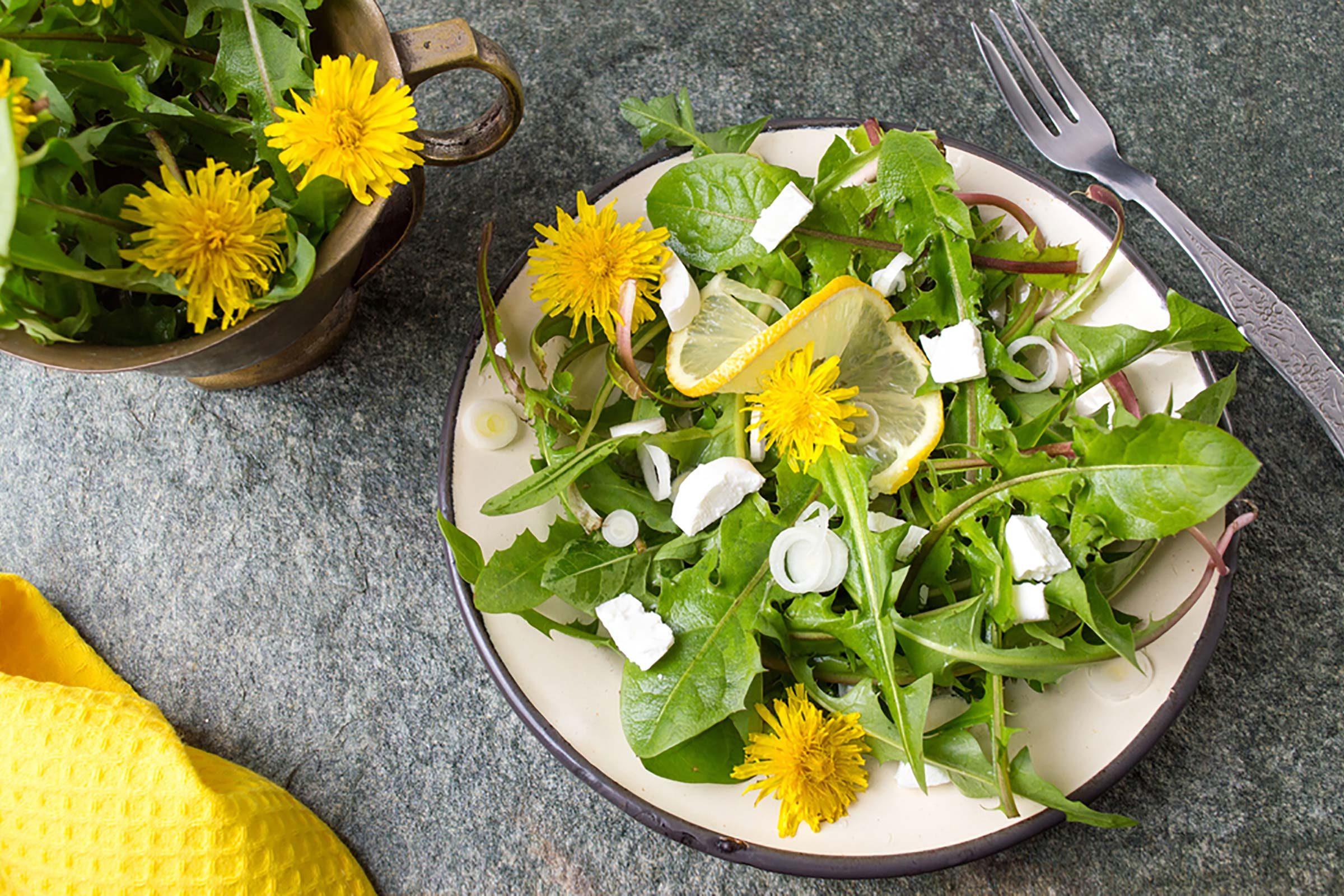 green salad with dandelions