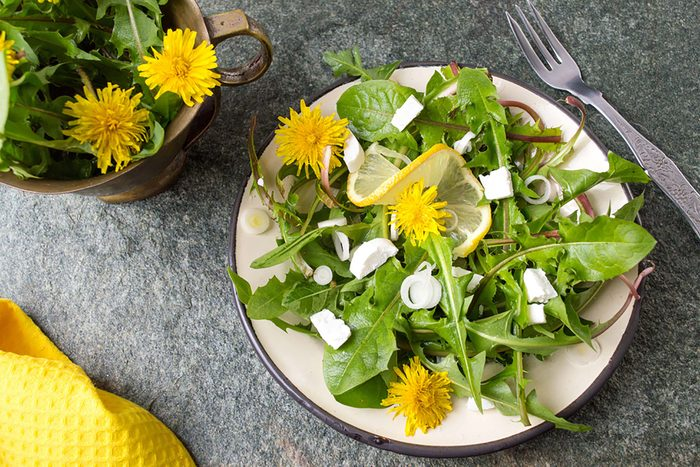 green salad with dandelions