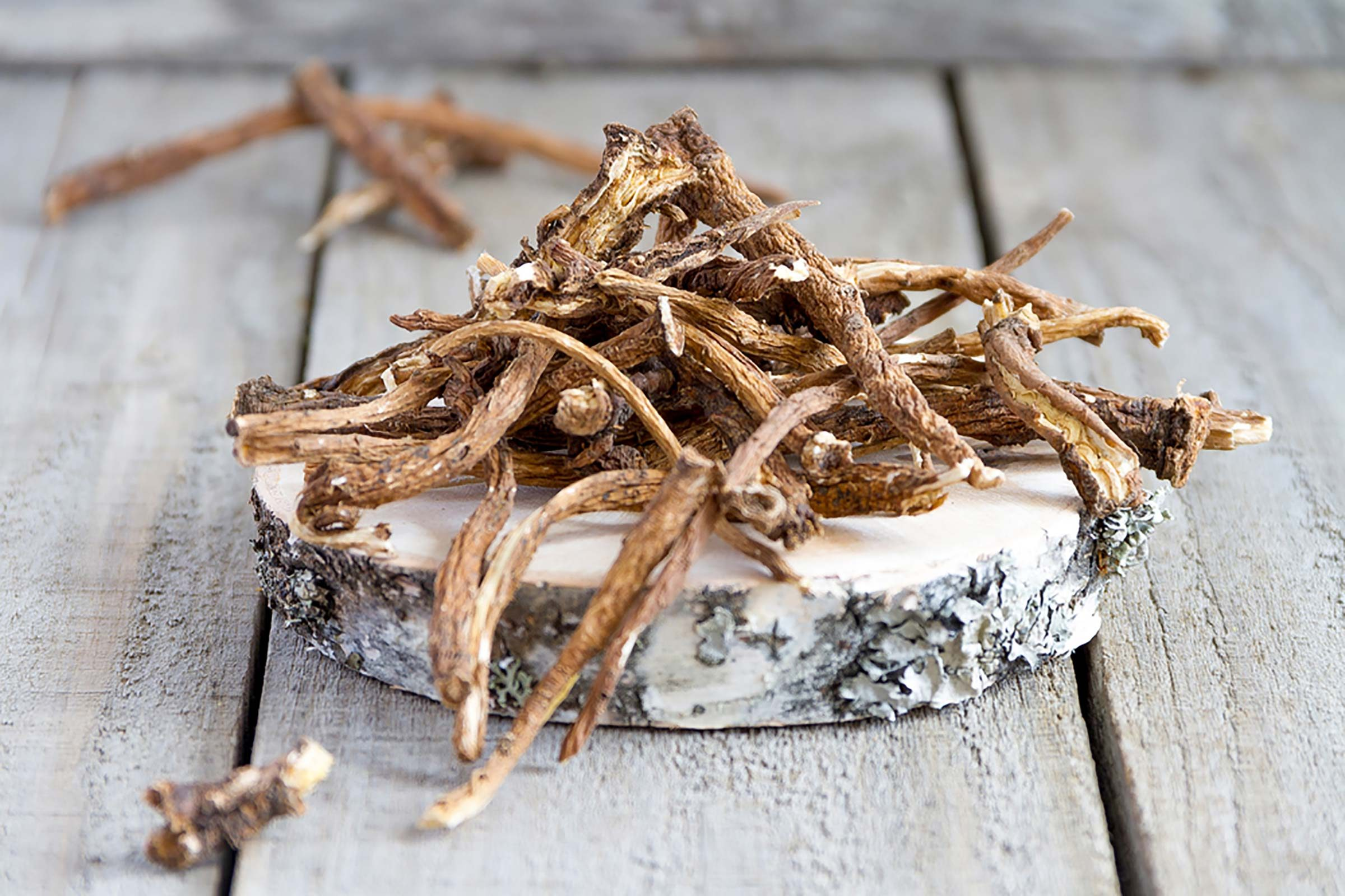 dried dandelion Roots