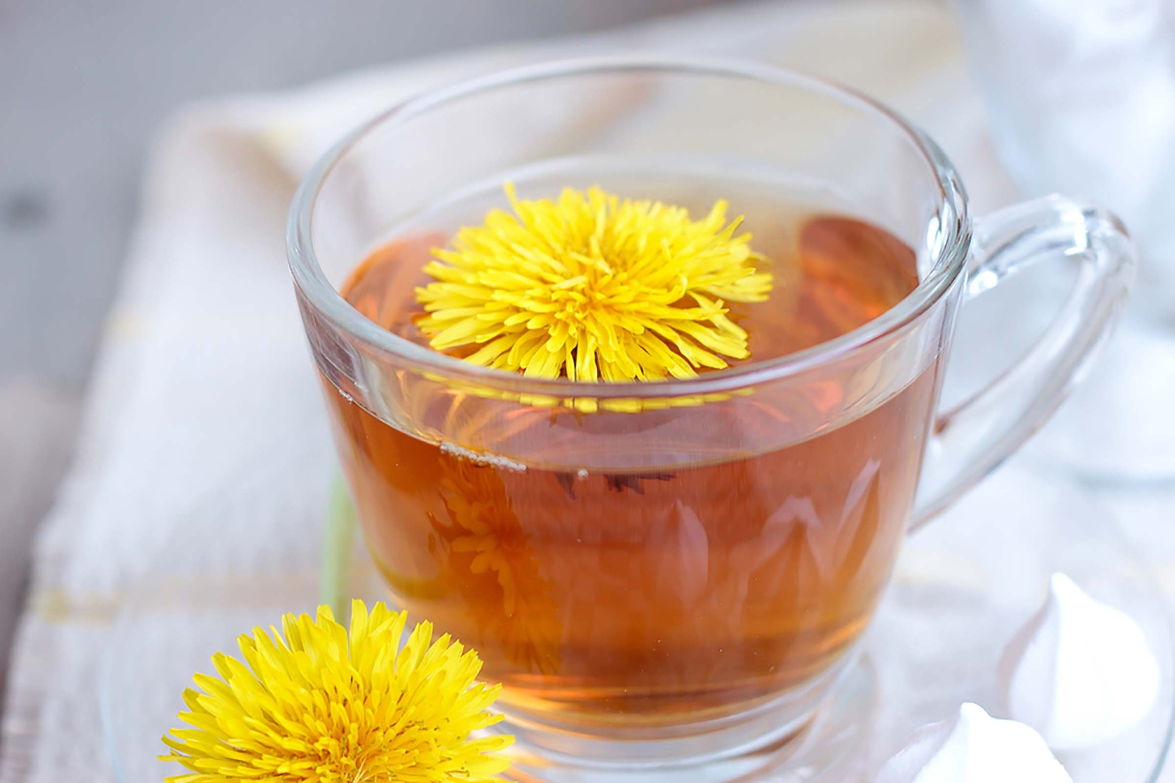 glass cup of dandelion tea with blossom