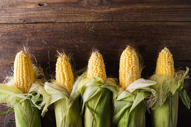half-shucked ears of corn