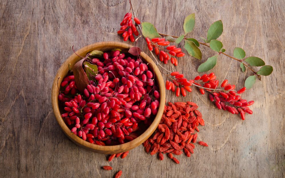 8 Health Benefits of Goji Berries You Didn't Know About