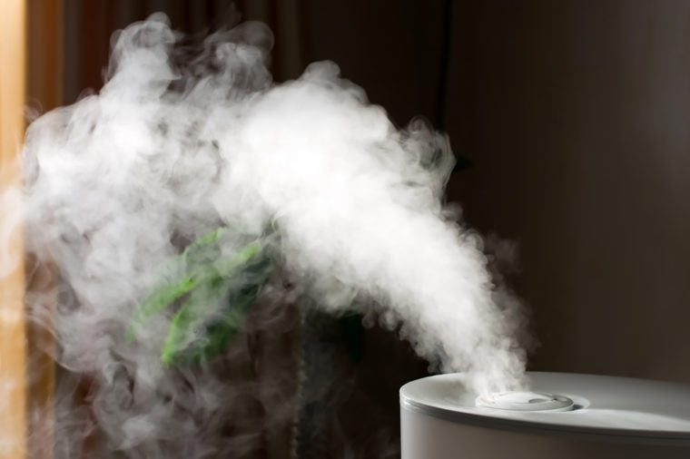 Humidifier with air blowing out of it