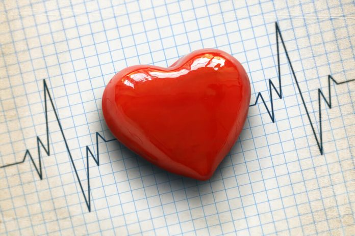 Cardiogram pulse trace and heart concept for cardiovascular medical exam