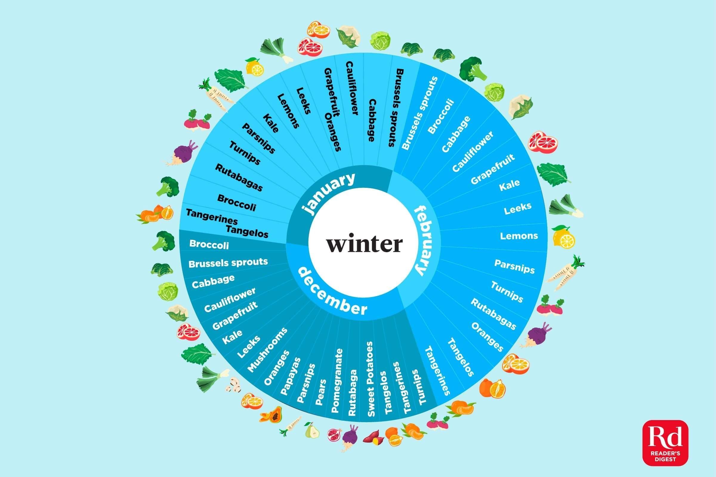 Illustration of in-season winter produce.