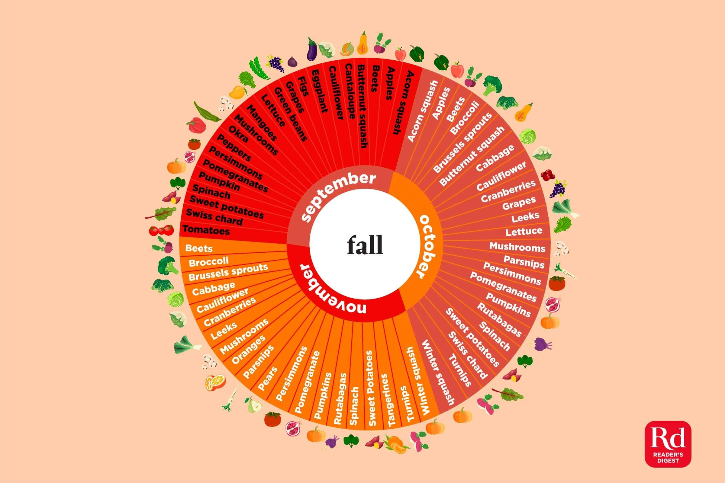 Illustration of in-season fall produce.