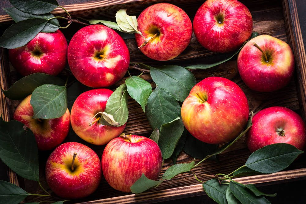 Red apples in wooden tray