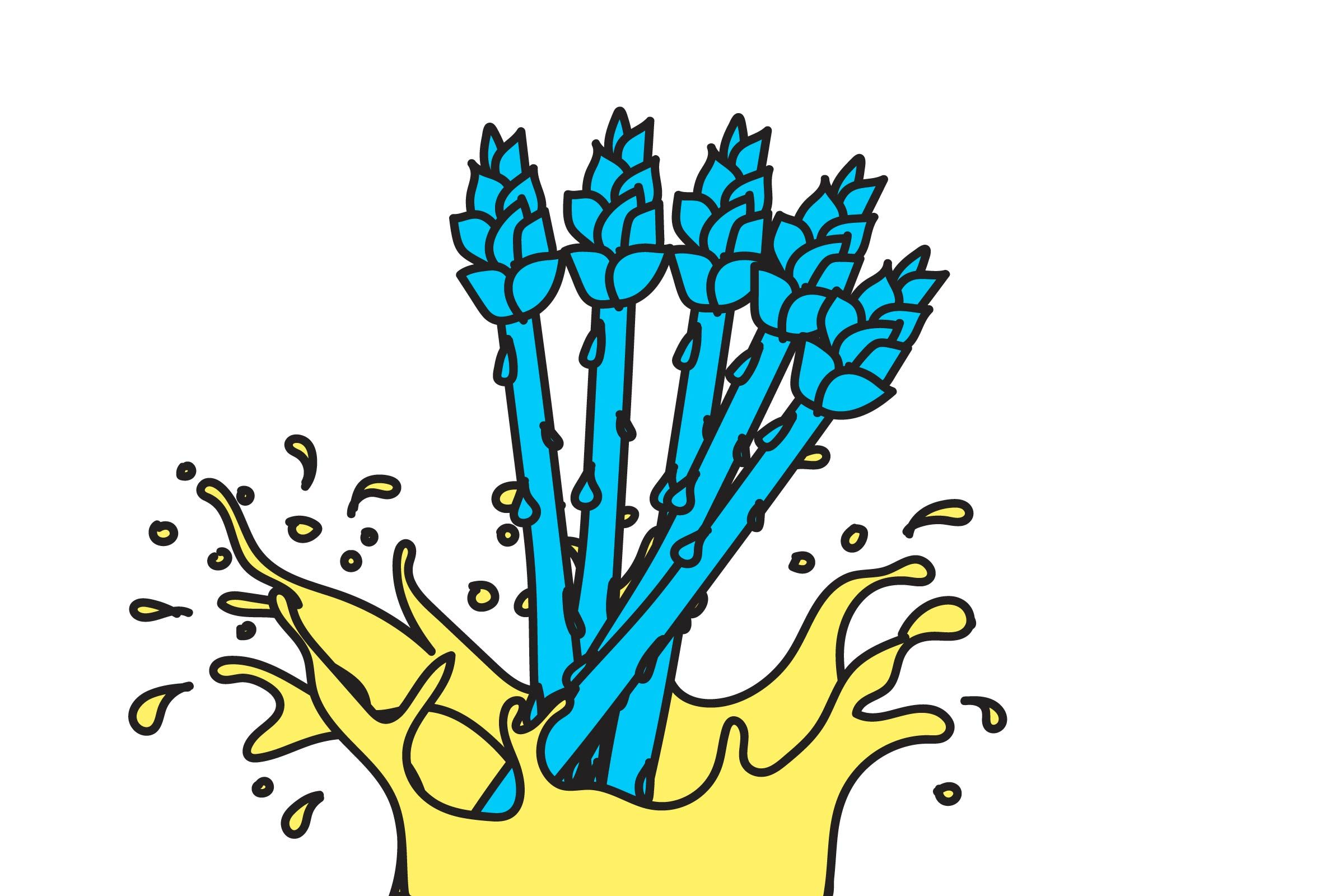 illustration of asparagus
