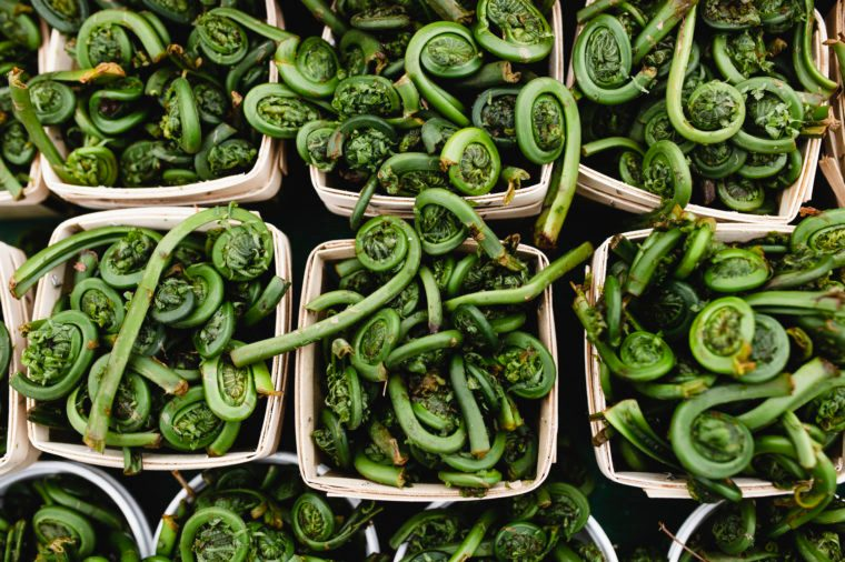 fiddlehead fern foods