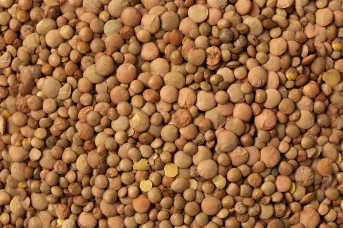 Dry brown lentils beans.